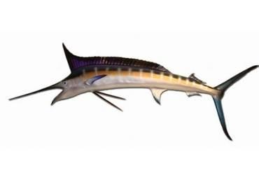 """Blue Marlin Fish Replica 59"""""""