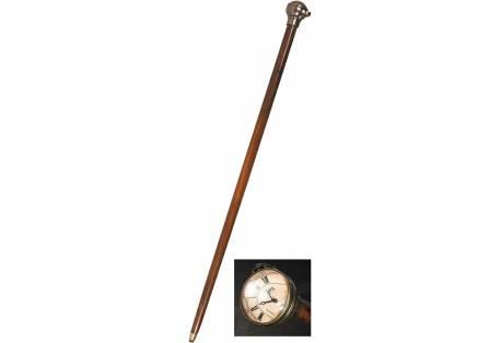 Time Companion Walking Stick