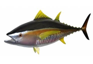 """38"""" Yellowfin Tuna Fish Replica"""