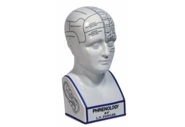 Phrenology Head Bust