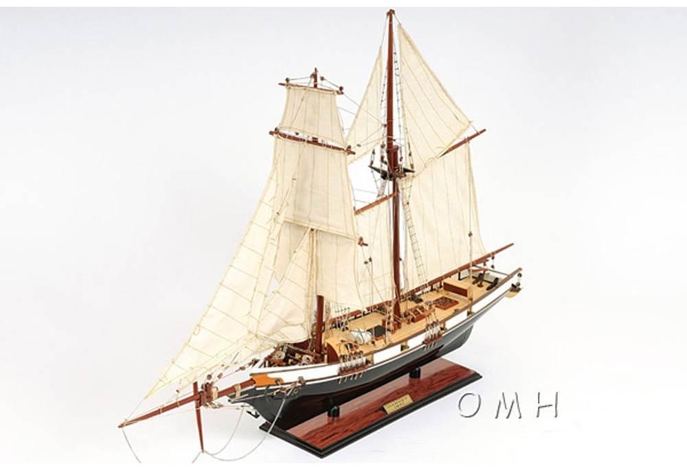 Baltimore Clipper Harvey 1800 S Wooden Boat Replica