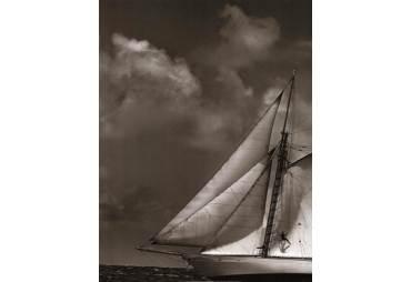 Sepia Sails II
