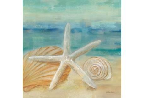 Horizon Shells Art