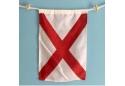 Nautical Signal Flag Letter V