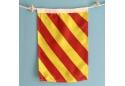 Nautical Signal Flag Letter Y